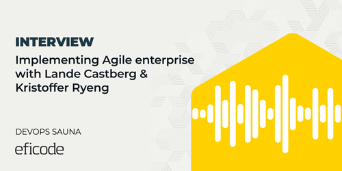 Interview: Implementing Agile enterprise with Lande Castberg and Kristoffer Ryeng