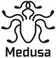 Medusa icon-1