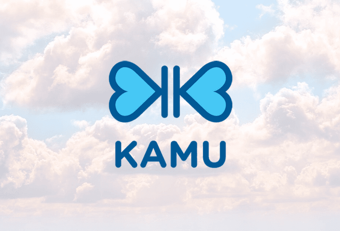 kamu health case
